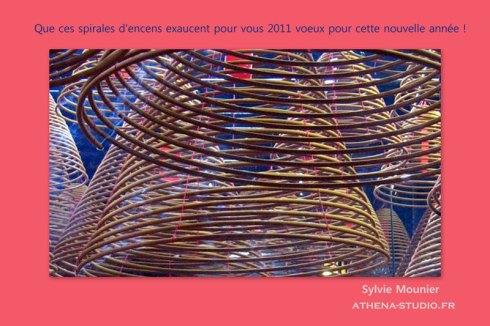 Que cette nouvelle année exauce 2011 voeux pour vous !